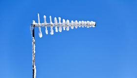 Snowy Antennae Against Blue Sky royalty free stock photo