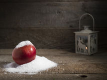 Snowy apple with christmas lamp decorated Stock Images
