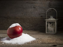 Snowy apple with christmas lamp decorated Royalty Free Stock Images