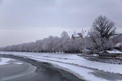 Snowy-Bäume entlang der gefrorenen Küstenlinie des Flusses, Winter in Uzhhorod, Ukraine Lizenzfreies Stockbild