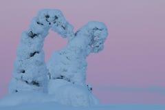 Snowy-Bäume in finnischem Lappland Stockfotografie