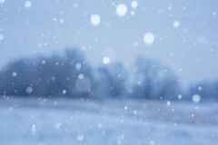 Snowy background Stock Image