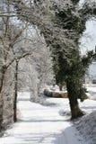 Snowy Backroad Immagine Stock Libera da Diritti