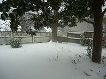 Snowy Backyard Stock Photo