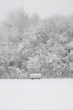 Snowy-Bank Lizenzfreie Stockfotos