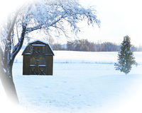 Snowy barn with tree close up Royalty Free Stock Photography