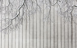 Snowy-Baumaste und -Betonmauer Lizenzfreie Stockfotos