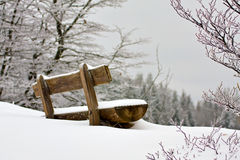 Snowy bench. Snow covered bench in the forest Stock Image