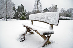 Snowy bench in the forest Royalty Free Stock Photo