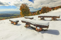Snowy bench in the forest. Snowy bench in the park and cloudy sky Royalty Free Stock Photos