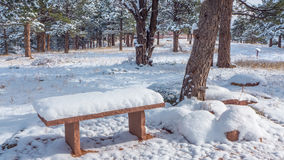Snowy Bench Royalty Free Stock Image