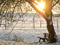 Snowy bench Royalty Free Stock Images