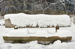 A snowy bench in the woods Royalty Free Stock Photos