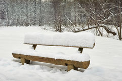 A snowy bench in the woods stock image