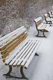 Snowy benches Stock Image