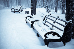 Snowy benches in the winter park Stock Photography