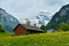 Snowy-Berg Saentis (Santis) angesehen von Alt-St. Johan, Switzerla Lizenzfreie Stockfotos