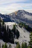 Snowy-Bergabhang Stockbild