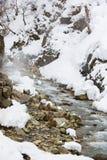 Snowy-Bergabhang, dampfiges Wasser, getarnte Schnee-Affen Lizenzfreie Stockfotografie