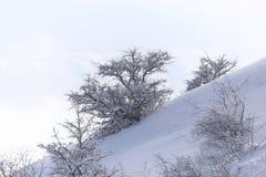 Snowy-Bergabhang draußen im Winter Lizenzfreie Stockfotos