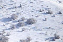 Snowy-Bergabhang im Winter Lizenzfreie Stockbilder