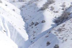 Snowy-Bergabhang im Winter Lizenzfreies Stockbild