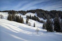 Snowy-Berge während des sonnigen Tages lizenzfreies stockfoto