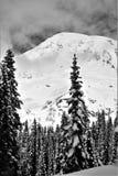 Snowy-Berglandschaft Stockfotografie