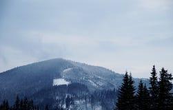 Snowy-Bergspitze morgens Stockbild