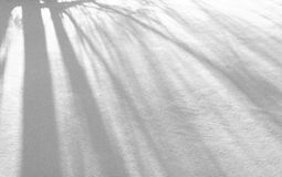Snowy-Beschaffenheit Lizenzfreie Stockbilder