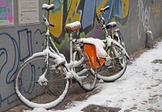 Snowy bicycles Royalty Free Stock Photo