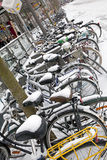 Snowy bicycles in Antwerp Royalty Free Stock Photo