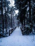 Snowy bike roads Stock Images