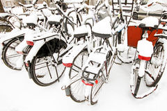 Snowy bikes in winter in Amsterdam the Netherlands Royalty Free Stock Photography