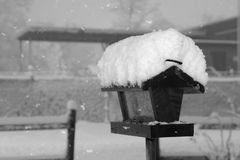 Snowy birdfeeder. Wintry scene of a snow covered bird feeder royalty free stock photo