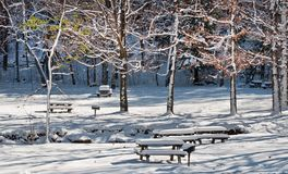 Snowy Blanket. A blanket of snow covers the picnic area of John Boyd Thacher Park in Voorheesville, New York Royalty Free Stock Images