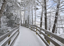 Snowy Boardwalk Royalty Free Stock Images