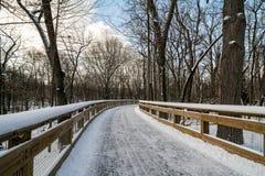 Snowy Boardwalk Trail Royalty Free Stock Photo