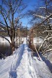 Snowy-Brücke Lizenzfreie Stockbilder