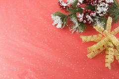 Snowy branch with gold foil bow Royalty Free Stock Image