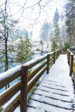 Snowy Bridge in Switzerland. Blue Lake in Switzerland surrounded by snow Royalty Free Stock Images