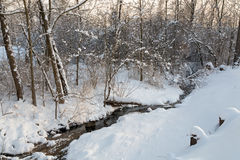 Snowy Brook Royalty Free Stock Photo