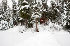 Snowy Cabin in Woods Stock Images
