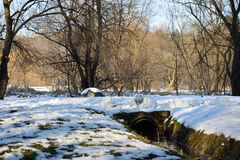 Snowy canal. A snowy current canal in the forest Royalty Free Stock Photos