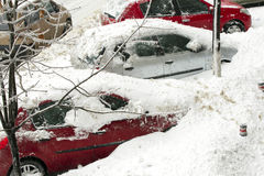 Snowy cars Stock Images