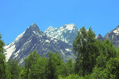 Snowy caucasus mountains and green forest under Stock Photo