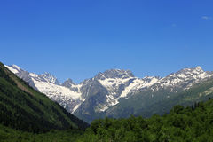 Snowy caucasus mountains and green forest under Royalty Free Stock Photos