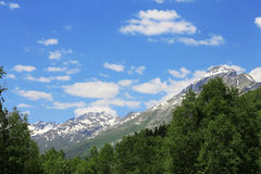 Snowy caucasus mountains and green forest under Stock Photography