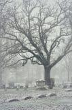 Snowy Cemetery Stock Image