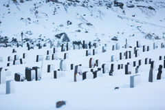 The snowy cemetery. The old cemetery of Flakstad town in the Lofoten Islands in winter Royalty Free Stock Photography